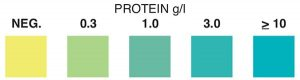 Protein Test Strip