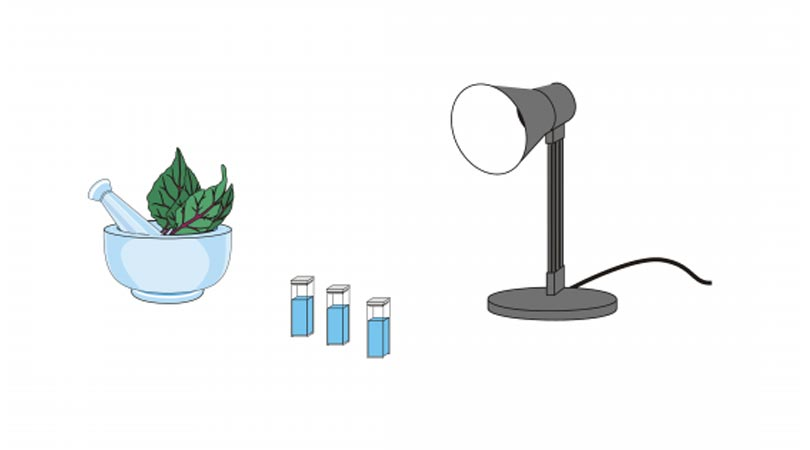 How 2 Photosynthesis colorimeter